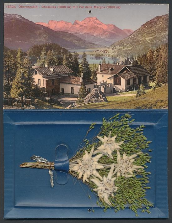 Klapp-Trockenblumen-AK Pontresina, Ortsansicht gegen Cresta mora, getrockneter Blumenstrauss mit Edelweiss 0