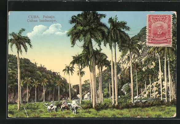 AK Paisaje, Landschaftansicht mit Palmen und Eselreitern