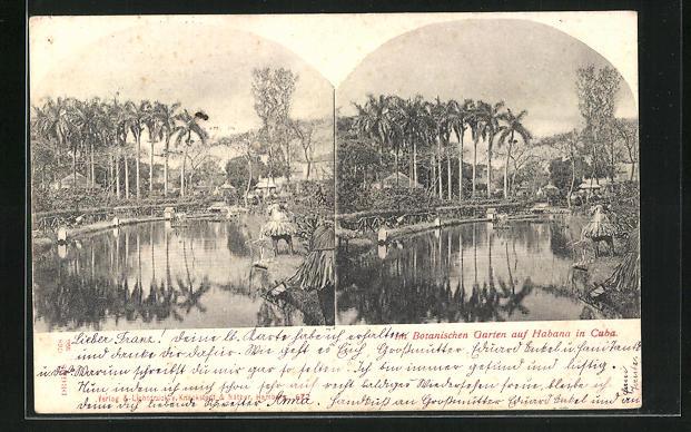 AK Habana, verschiedene Ansichten des Botanischen Gartens