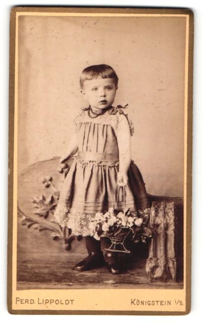 Fotografie Ferd. Lippoldt, Königstein i / S., Portrait niedliches Kleinkind mit Blumenkorb im hübschen Kleid