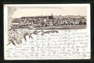 Lithographie Dinkelsbühl, Panoramablick auf die Stadt