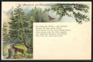 Duft-AK mit Tannenduft, Hirsch und Eule im Wald
