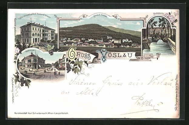 Lithographie Vöslau, Hotel Schweizerhof, Hochstrasse, Badequelle