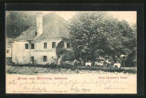 AK Mürzsteg, Hotel von Alois Grabner
