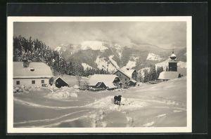 AK Krispl, Ortsansicht mit Hund im Schnee