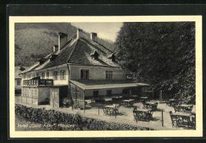 AK Mürzsteg, Hotel goldener Adler