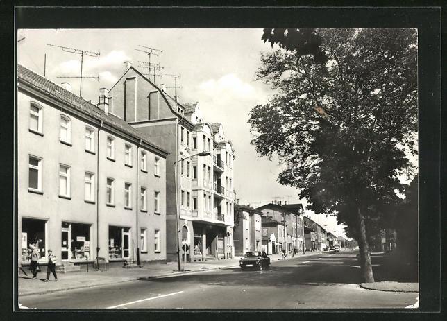 AK Markranstädt, Leipziger Strasse mit Bäumen