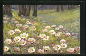 Künstler-AK Anna Haller: blühende Blumen im Wald