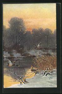 Künstler-AK Alfred Schönian: Enten am Bach im Winter
