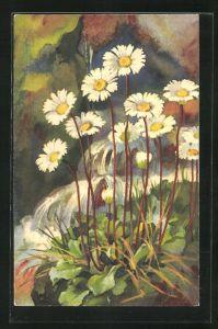 Künstler-AK Anna Haller: Weisse Blumen am Wildbach