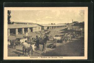 AK Asmara, Scuderie del Servizio Treno