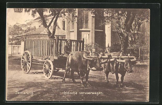 AK Semarang, Indische vervoerwagen, Ochsenfuhrwerk