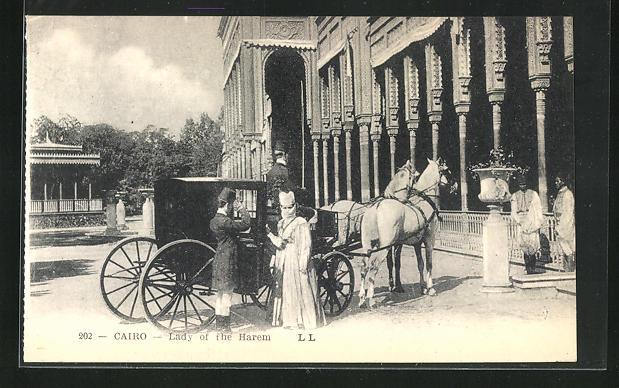 AK Cairo, Lady of the Harem, Pferdekutsche