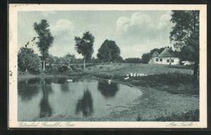 AK Ostseebad Rewahl, Teilansicht am Teich