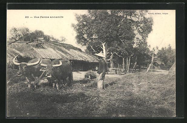 AK Saigon, Une ferme annamite, Bauern mit seinen Rindern