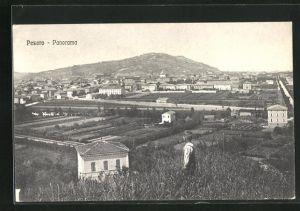 AK Pesaro, Panorama