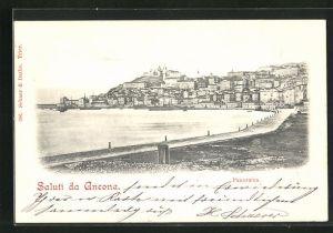 AK Ancona, Panorama