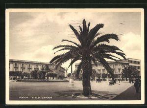AK Foggia, Piazza Cavour