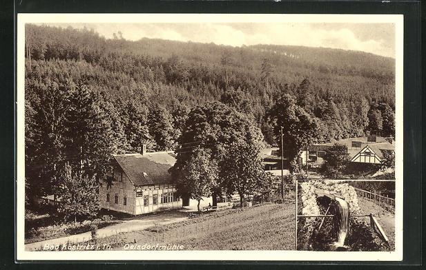 AK Bad Köstritz i. Th., Gasthaus Oelsdorfmühle mit Wald, Wasserrad