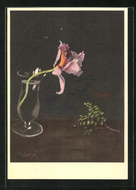 Künstler-AK Ernst Kreidolf: Orchidee