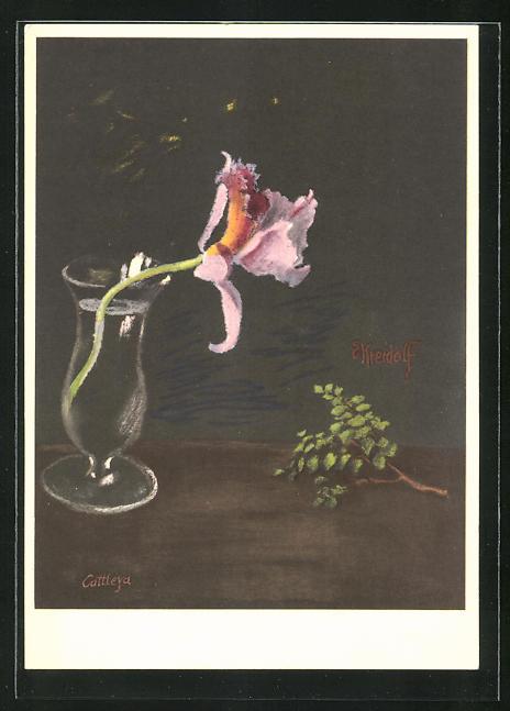 Künstler-AK Ernst Kreidolf: Orchidee in Wasserglas