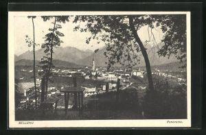 AK Belluno, Panoramablick vom Berg
