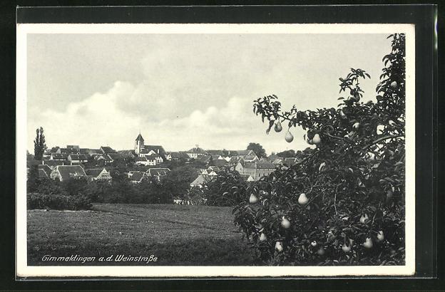 AK Gimmeldingen a. d. Weinstrasse, Blick zum Ort