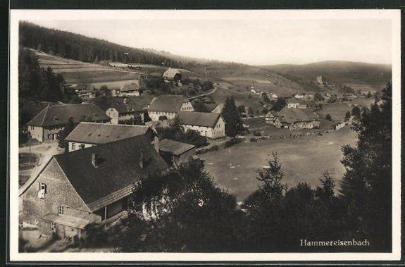 AK Hammereisenbach, Ortsansicht mit Gasthaus zum Hammer