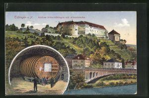 AK Tübingen a. N., Schloss Hohentübingen mit Alleenbrücke