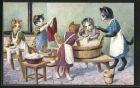 AK Haushaltsschule für Katzen, Grosse Wäsche, vermenschlichte Tiere