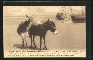 AK Ligue Internationale Antivivisectionniste, Bruxelles, Rue Augustin Delporte 90, Esel am Strand, Tierschutz