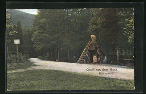 AK Forstwirtschaft, Köhlerhütte im Harz am Waldrand