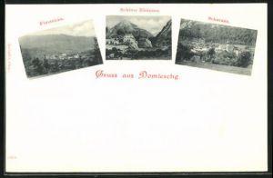 AK Scharans, Fürstenau, Schloss Rhäzüns im Domleschg