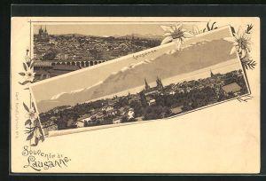 AK Lausanne, Panorama