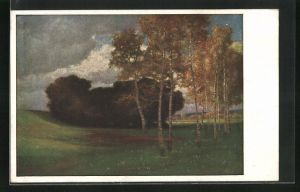 Künstler-AK Hermann Rüdisühli: Birken im Moor, Landschaft
