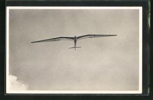 AK Segelflugzeug vom Typ Moazagotl mit Pilot W. Hirth