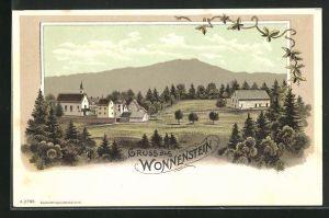 Lithographie Wonnenstein, Teilansicht des Dorfes