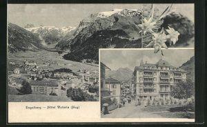 AK Engelberg, Hotel Victoria, Ortsansicht