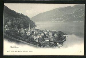 AK Mühlehorn, Ortsansicht aus der Vogelschau