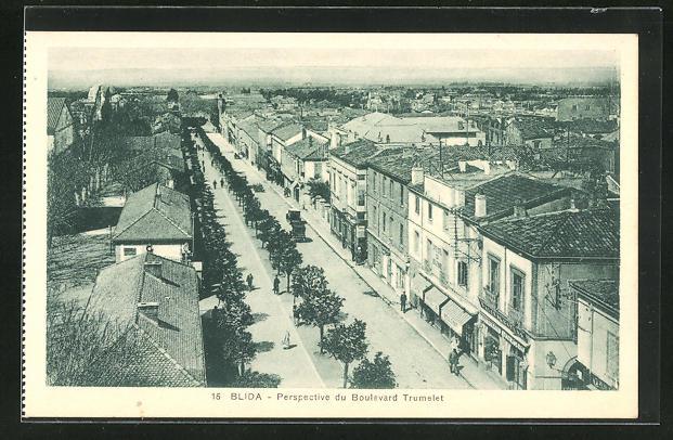 AK Blida, Perspective du Boulevard Trumelet