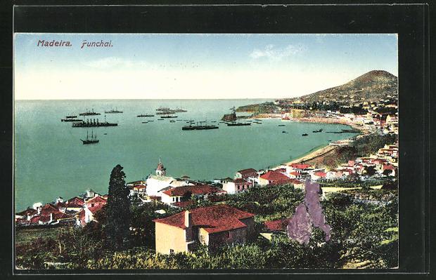 AK Funchal / Madeira, Panoramablick auf den Küstenort