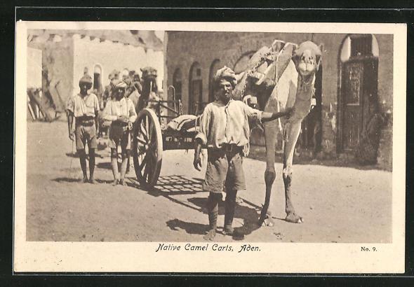 AK Aden, native Camel Carts