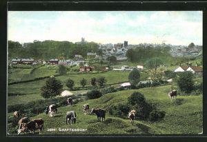 AK Shaftesbury, Blick von der Kuhweide zum Ort