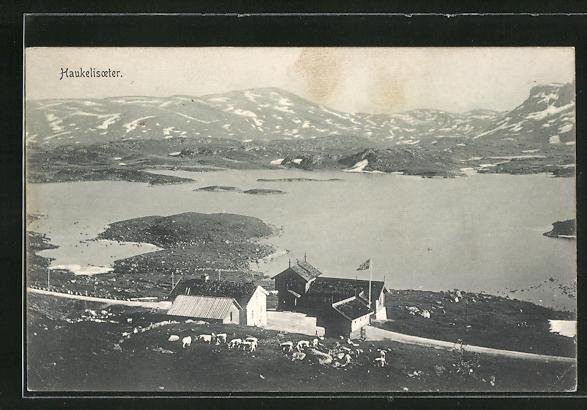 AK Haukelisoeter, Panoramablick vom Berg