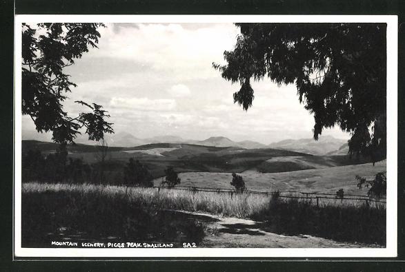 AK Swaziland, Mountain Scenery, Piggs Peak 1950