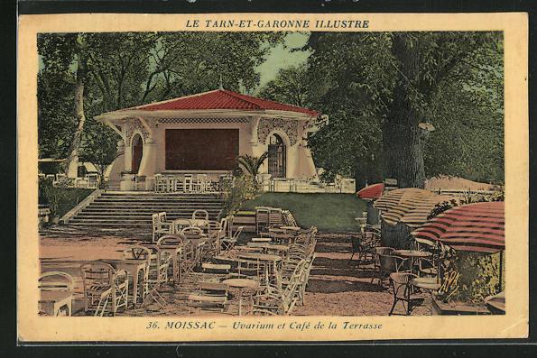AK Moissac, Uvarium et Cafe de la Terrasse