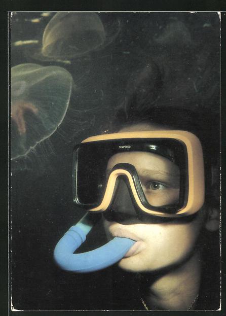 AK Durch den Tauchsport der GST, Erlebnis Unterwasserwelt, Quallen
