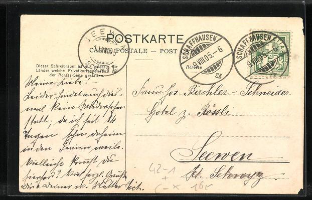 AK Neuhausen a. Rheinfall, Schaffhauser Kantonal-Schützenfest 1905, Schiessstand, Teilansicht 1