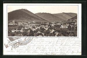 Vorläufer-Lithographie Harzburg, 1892, Totale des Ortes