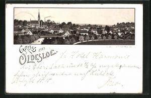 Vorläufer-Lithographie Oldesloe, 1894, Gesamtansicht des Ortes